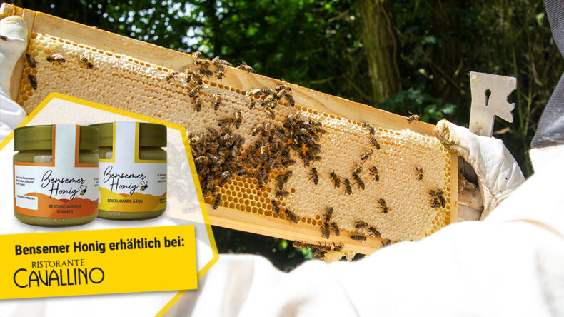 Bensemer Honig